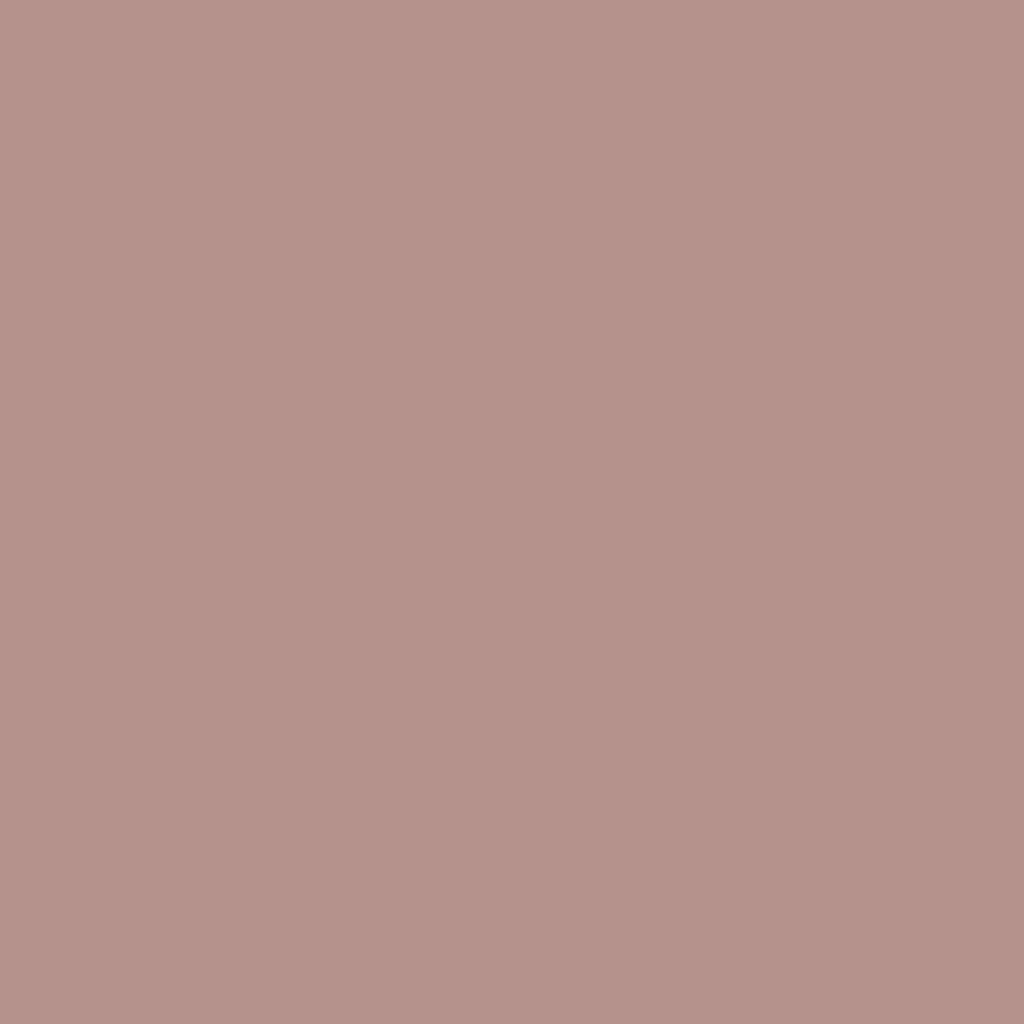 BS 4800 02C37 Clover Pink