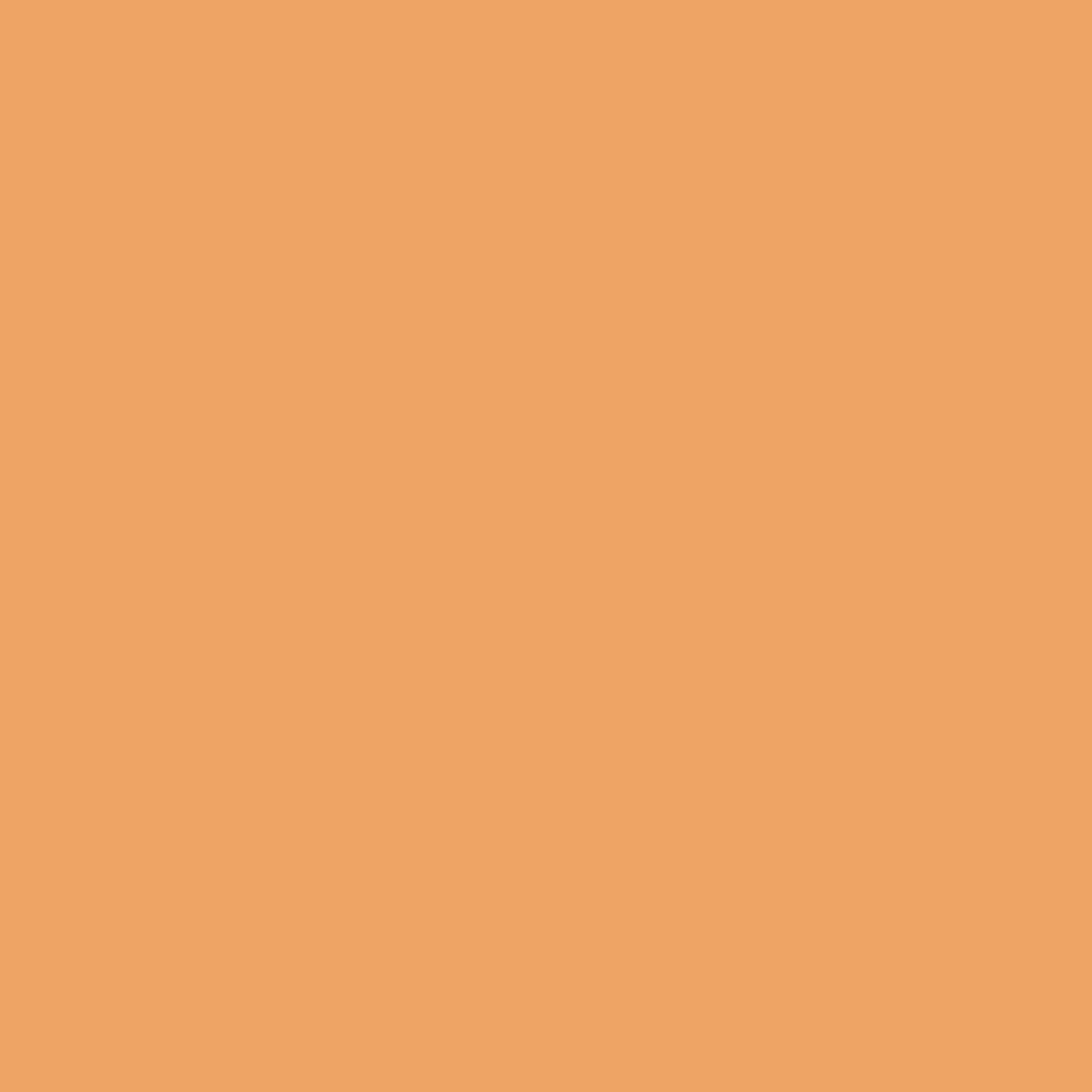 BS 4800 06E51 Mandarin Orange