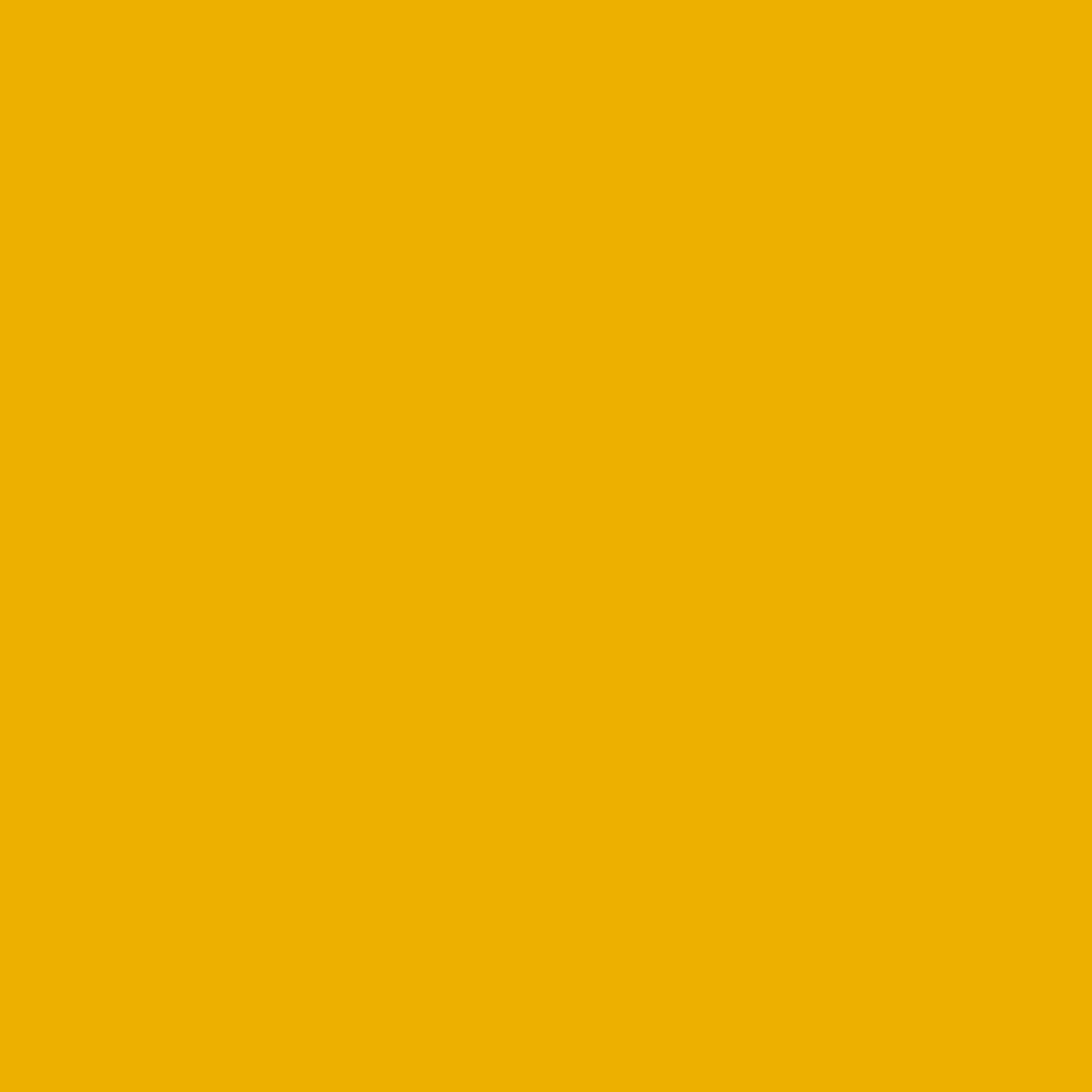 BS 4800 08E51 Golden Yellow