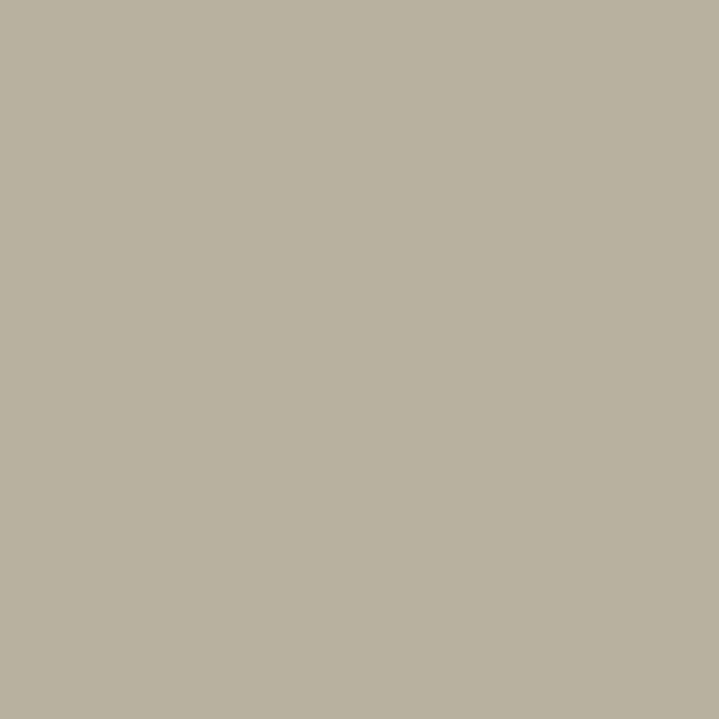 BS 4800 10B21 Lizard Grey