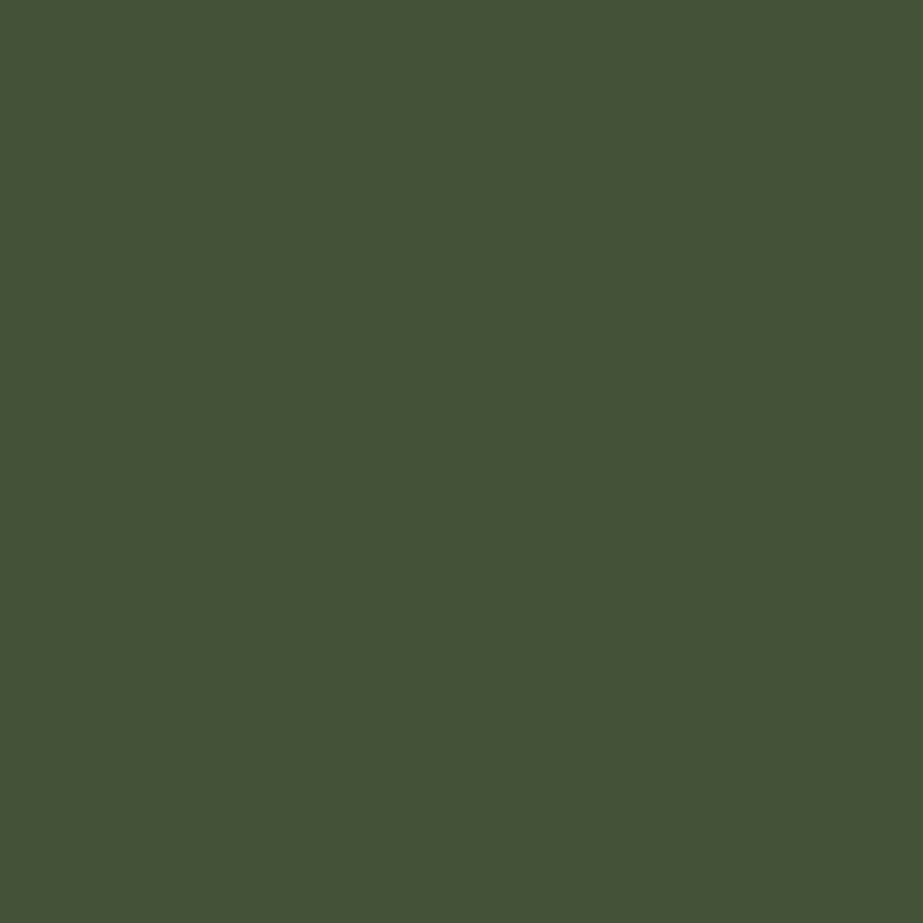 BS 4800 12C39 Ivy Green or RAL 6003 Olive Green