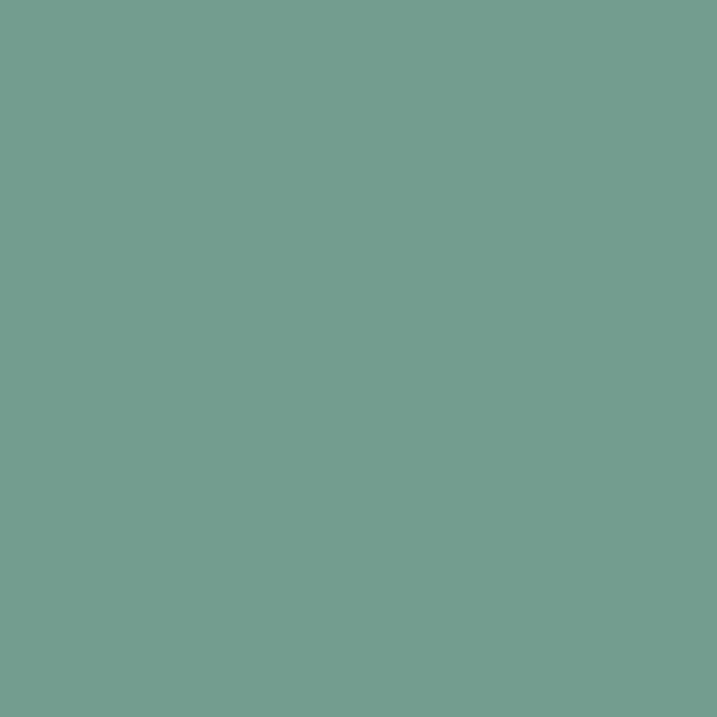 BS 4800 14E51 Bright Green