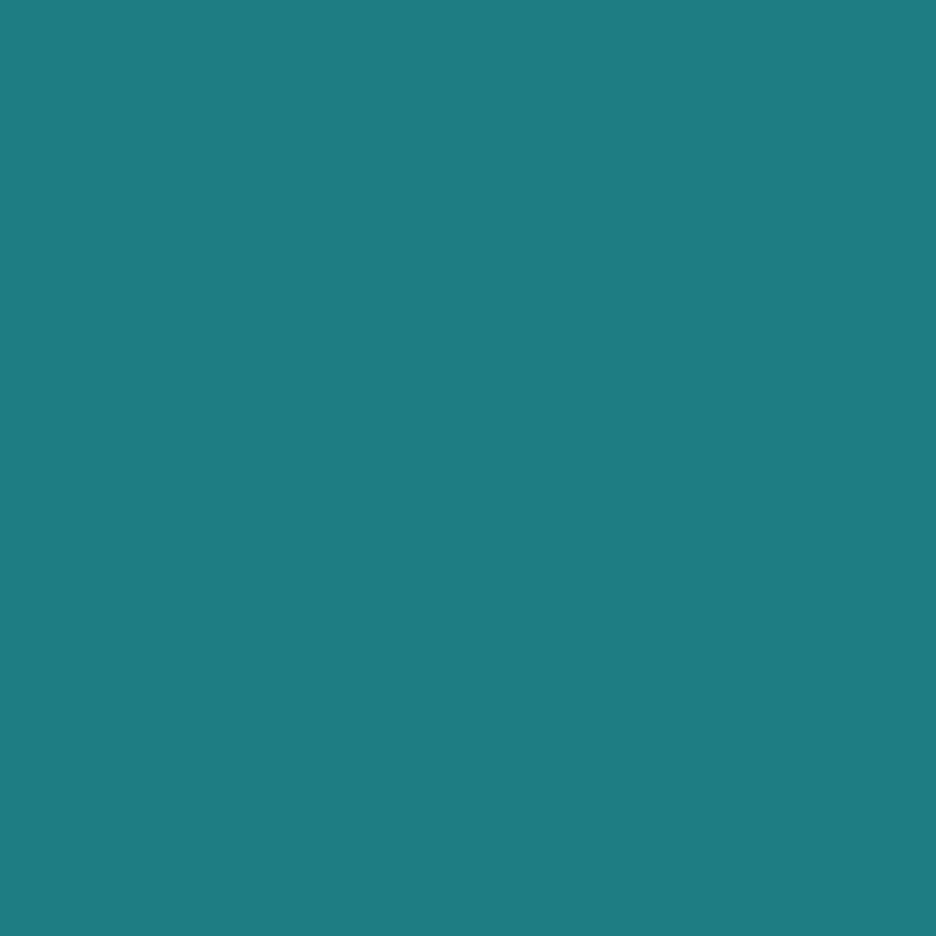 BS 4800 14E53 Irish Green
